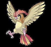 Ilustración de Pidgeotto