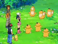 Archivo:EP556 Psyduck felices.png