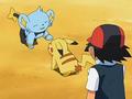 EP559 Pikachu con Shinx.png