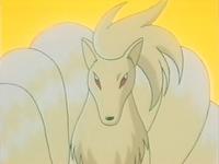 Archivo:EP171 Ninetales.jpg