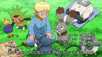 OPJ17 Pokémon de Lem