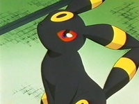 Archivo:EP228 Umbreon.png