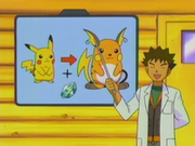 EP287 Evolución Pikachu a Raichu.png
