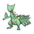Sceptile XY.png