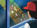 EP479 Ash observando a los Pokémon hipnotizados.png