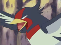 Archivo:EP358 Swellow de Ash.png