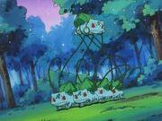 EP051 Secuestro del Bulbasaur de Ash.jpg
