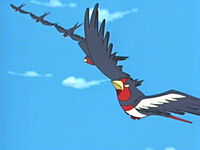 EP406 Swellow usando Doble equipo.jpg