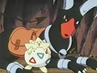 Archivo:EP182 Houndoom y Togepi (4).png