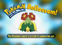EP186 Pokémon.png
