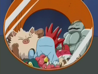 Archivo:EP264 Pokémon capturados (2).png