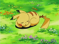 Archivo:EP525 Pikachu durmiendo como señuelo.png