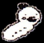 Kokana