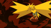 P02 Zapdos.png