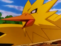 Archivo:EP244 Zapdos.png