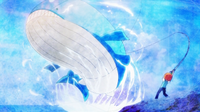 EP844 Wailord