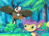 EP471 Starly vs Aipom de Ash.jpg