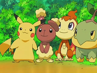 Archivo:EP544 Pikachu, Buneary, Chimchar y Turtwig.png