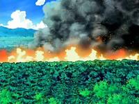 Archivo:EP540 Bosque en llamas.png