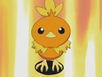 Archivo:EP277 Torchic.png