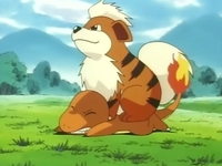 EP033 Growlithe.png