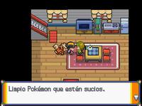 Dalia hablando de limpiar Pokémon HG.png