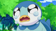 EP606 Piplup llorando.png