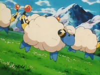 Archivo:EP141 Mareep (5).png
