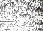 Equatorial swamp.jpg