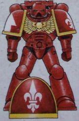 Marines esquema templarios rojos.jpg