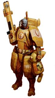 Tau Firewarrior.jpg