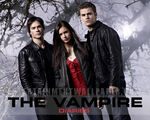 Tv the vampire diaries01-1-