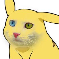 Pikachu exploitable1