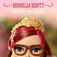 Facebook - get to know Rosabella