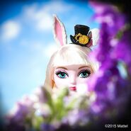 Facebook - Bunny's face first look