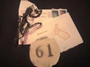 Rabbit61