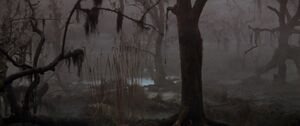 The Swamps of Sadness