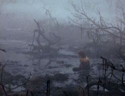 The Swamp of Sadness