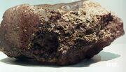 Plesium