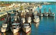 Morgan-city-shrimp-fleet