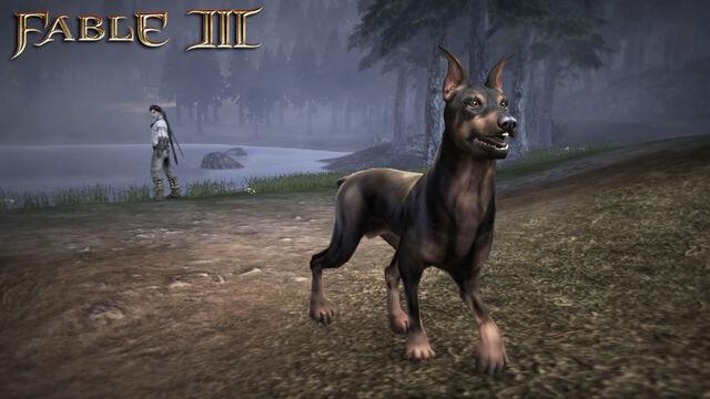 File:F3 DLC Doberman.jpg
