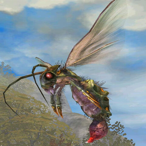 File:Wasp Queen.jpg