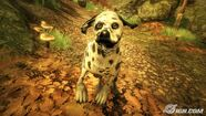 Fable-ii-see-the-future-qa-20090428003524919 640w