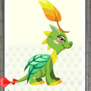 Plant dragon lv4-6