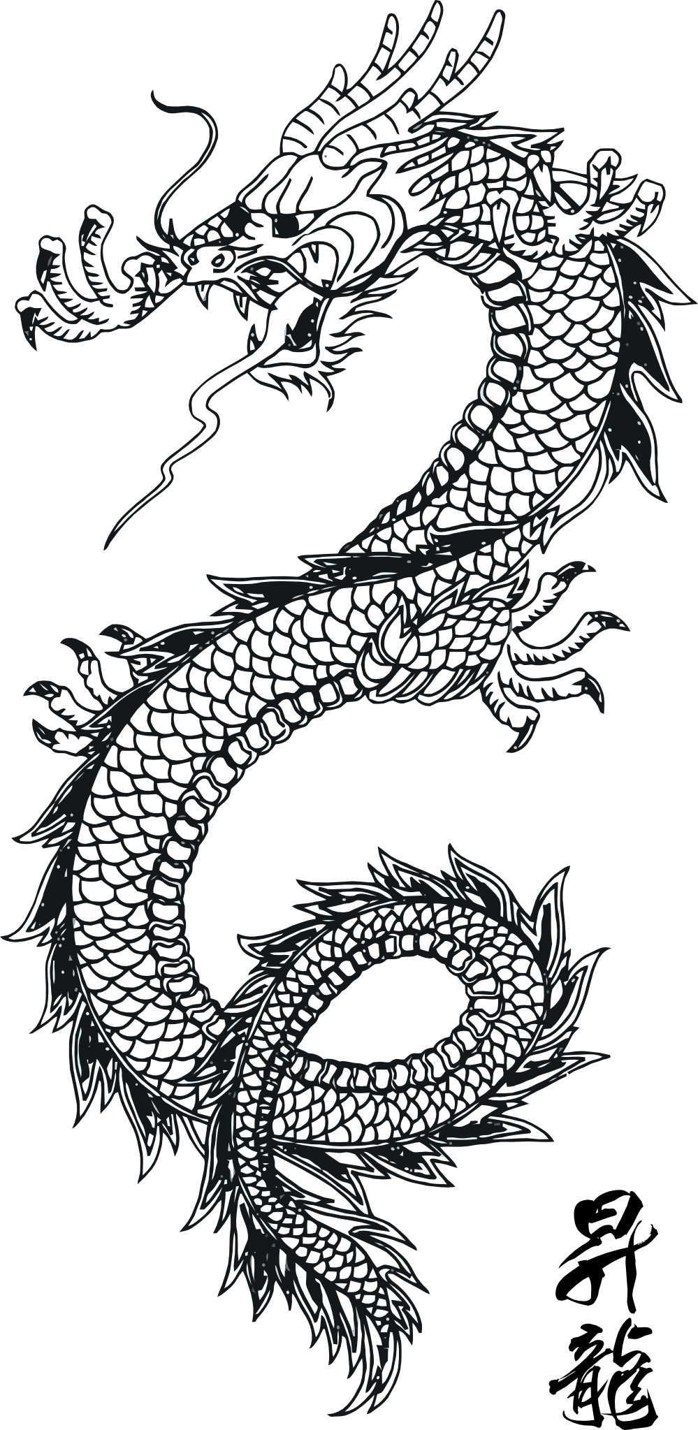 Image Chinese dragon images clip art 1png Fairy Tail Oc Wiki