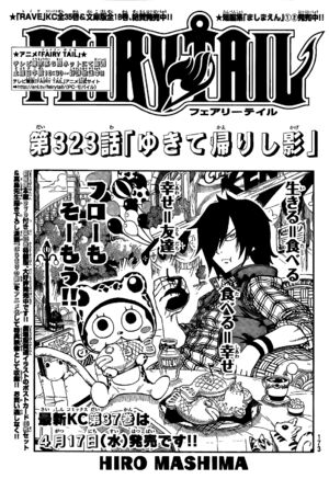 Cover 323
