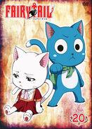 FT DVD20