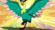 Lisanna Bird