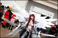 Best Erza Cosplayer