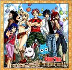 Ścieżka Dźwiękowa Fairy Tail CD 3